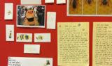 Bienenprojekt im Kindergarten