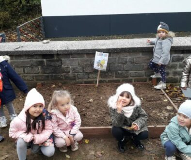 wey-Bienenprojekt 1