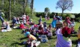 wey-picknick im Wald 1